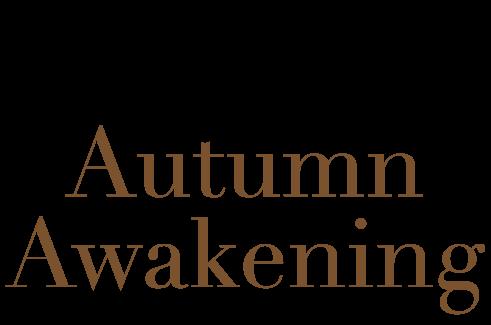 Gimmicks - Autumn Awakening