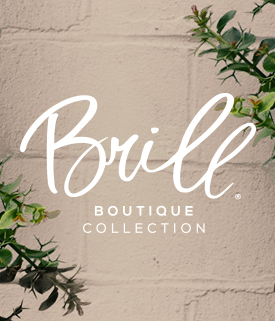 Brill Boutique Collection