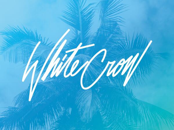 White Crow logo on bright blue decorative background.