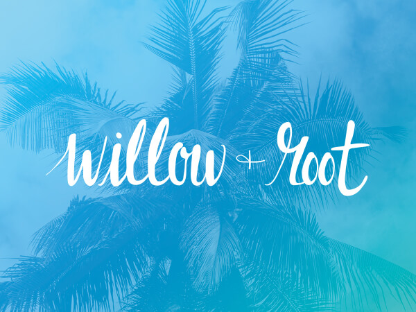 Willow + Root logo on bright blue decorative background.